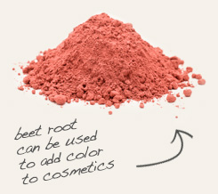 [ beet root tip: Mix Vietnamese cinnamon with beet root powder to get different shades of foundation or blush. ~ from Monterey Bay Spice Company ]