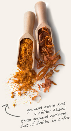[ mace tip: Combine whole cloves with ground mace in baked foods and in Indian curries.   ~ from Monterey Bay Spice Company ]