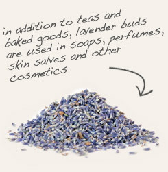 [ tip: Combine large granule sea salt with lavender flowers in bath bags. ~ from Monterey Bay Spice Company ]