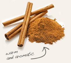 cinnamon pairs well with anise seed