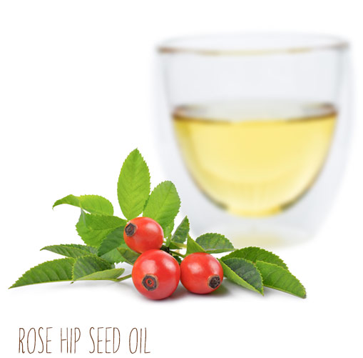 [ rose hip seed carrier oil ] ~ from Monterey Bay Spice Company