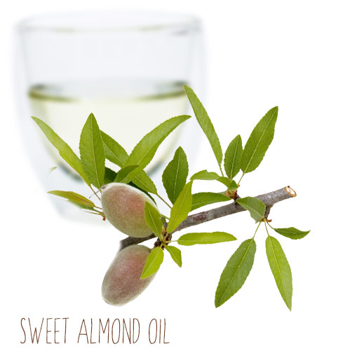 [ sweet almond carrier oil ] ~ from Monterey Bay Spice Company