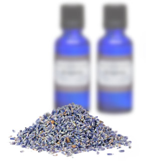 [ lavender essential oil ] ~ from Monterey Bay Spice Company