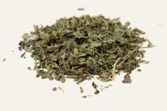 [ Info: dried nettle ] ~ from Monterey Bay Spice Company