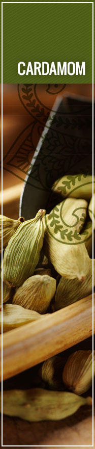 [ Select Spices of India: Cardamom ] ~ from Monterey Bay Spice