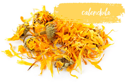 [ Late-Summer Herbal Skin Care Formulas: Calendula ] ~ from Monterey Bay Spice Company