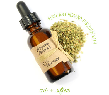 Tinkering with Tinctures ~ The Essence of Herbal Wisdom ~ by HERBCo com