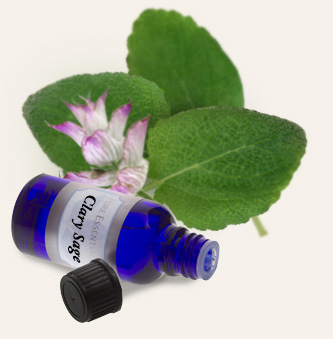 Bulk Clary Sage Essential Oil ~ Monterey Bay Spice Co