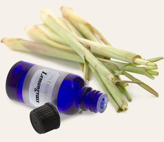 Bulk Lemongrass Essential Oil ~ Monterey Bay Spice Co