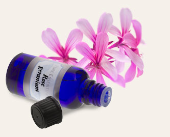 Bulk Rose Geranium Essential Oil ~ Monterey Bay Spice Co