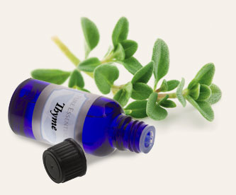 Bulk Thyme Essential Oil ~ Monterey Bay Spice Co