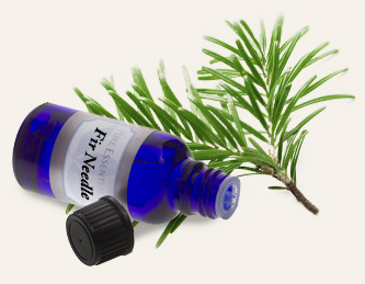 Bulk Siberian Fir Needle Essential Oil ~ Monterey Bay Spice Co
