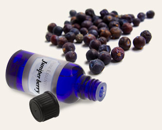 Bulk Juniper Berry Essential Oil ~ Monterey Bay Spice Co