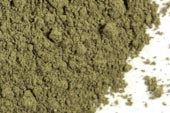 how to make peppermint leaf powder