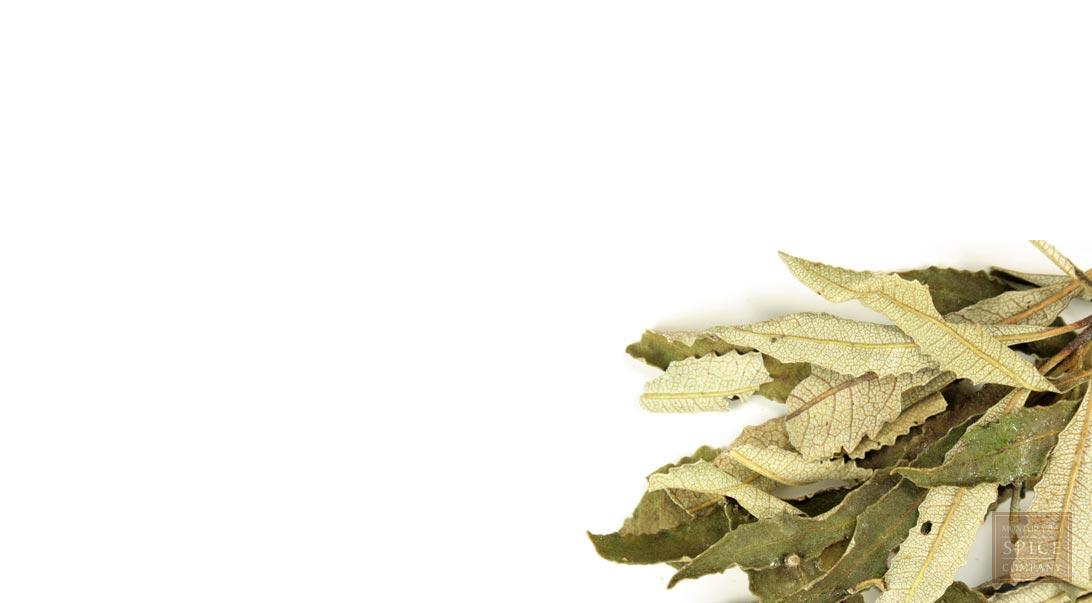 Yerba santa leaf, whole, wild crafted