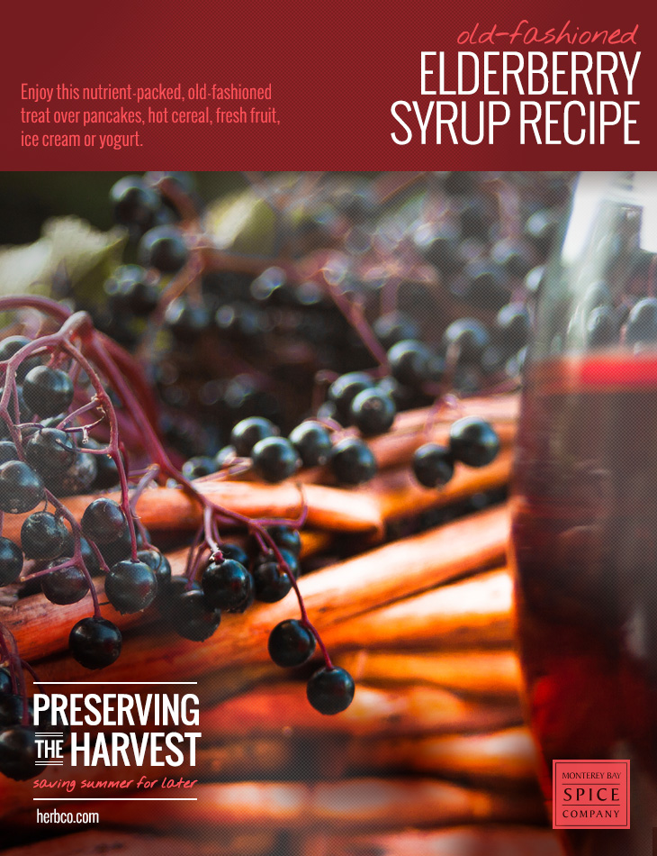 [ Recipe: Elderberry Syrup ] ~ from Monterey Bay Spice Co