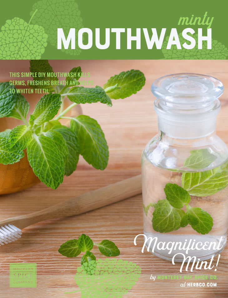 [ Recipe: DIY Minty Mouthwash Recipe ] ~ from Monterey Bay Spice Co