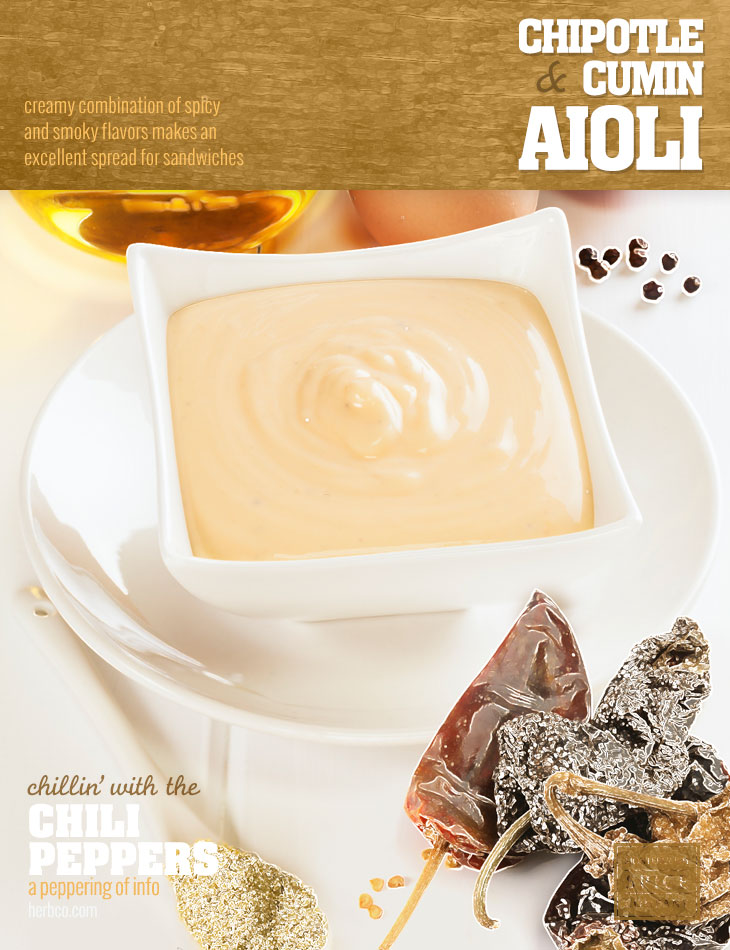 [ Recipe: Chipotle & Cumin Aioli  ] ~ from Monterey Bay Spice Co