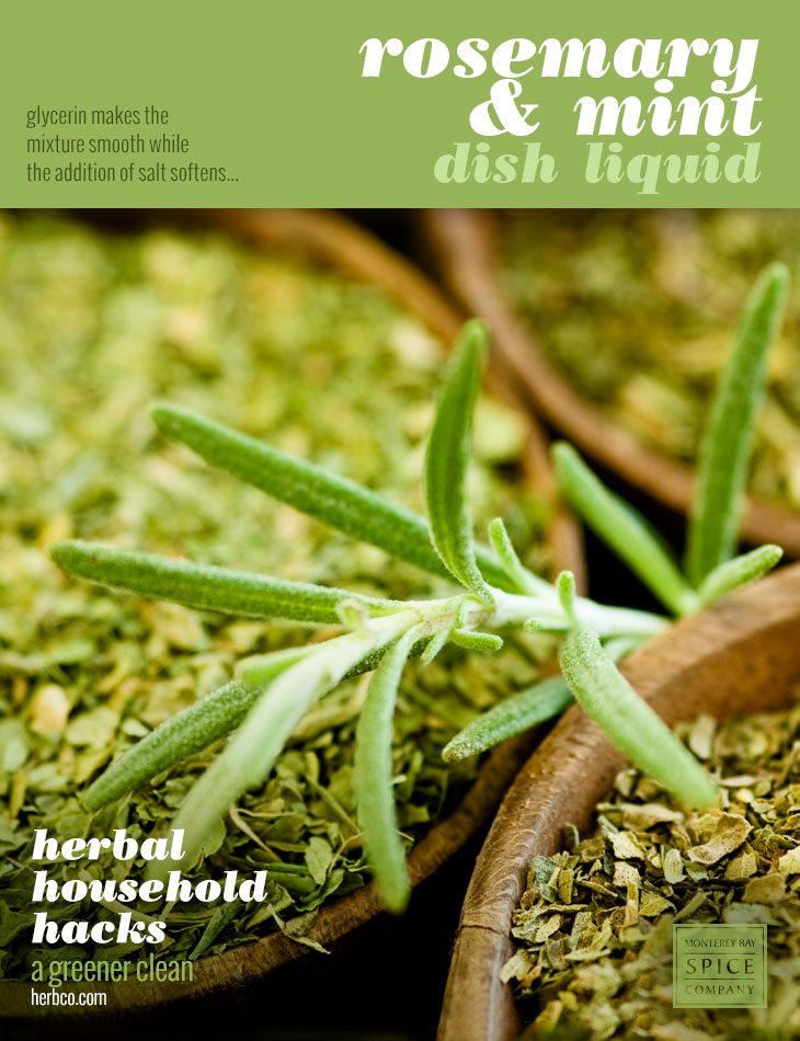 [ DIY Recipe: Rosemary & Mint Dish Liquid ] ~ from Monterey Bay Spice Co