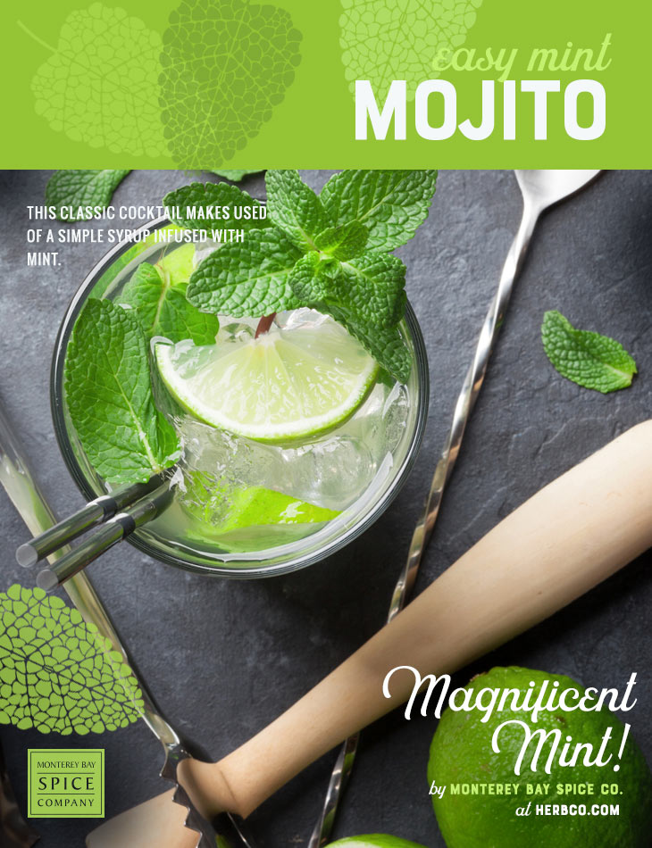 [ Recipe: Easy Mint Mojito Recipe ] ~ from Monterey Bay Spice Co